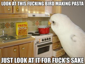 bird_pasta2